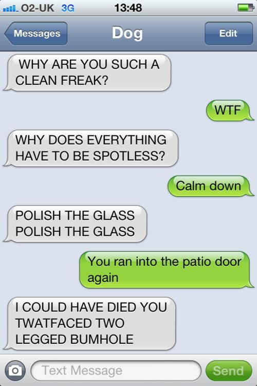 hahaha:  Internet Site,  Website, Dogtext, Web Site, Dog Texts, Funny, Dogs Texts, Funnies, Clean Freak