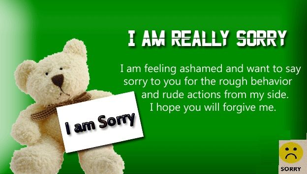 I/'m Sorry Message Cute Teddy Bear Apology Gift To Say Sorry NEW