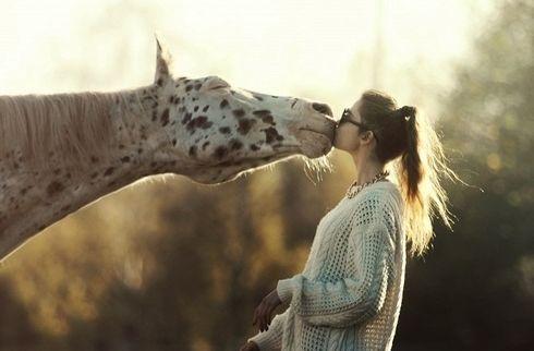 Hayvan Sever Ve Hayvan Severlik Hakkında Genel Bilgi | Hayvan Kolik