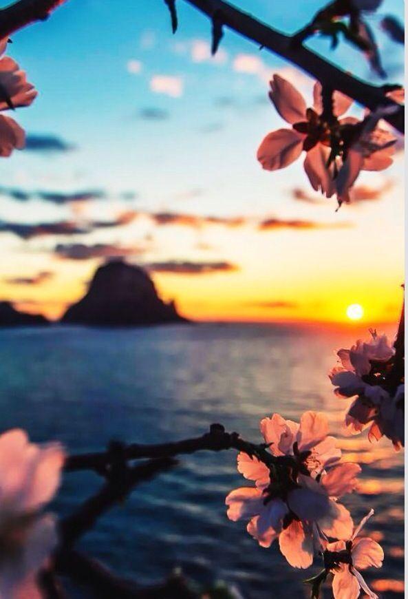 Romantic Summer Sunset Photographie De Paysages Photo Paysage Magnifique Photos Paysage