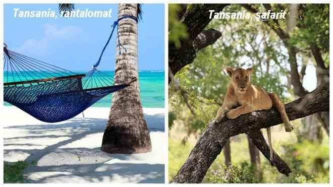Tansanian rantalomat ja safarit