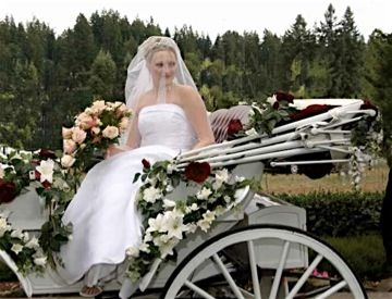 country horse drawn wedding carriage - Google Search