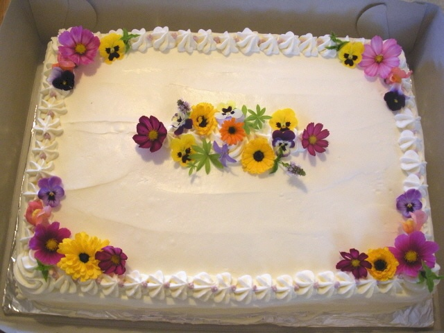 inexpensive option and they are good just an idea costco cake bridal shower stuff in 2018 pinterest costco cake cake and celebration cakes