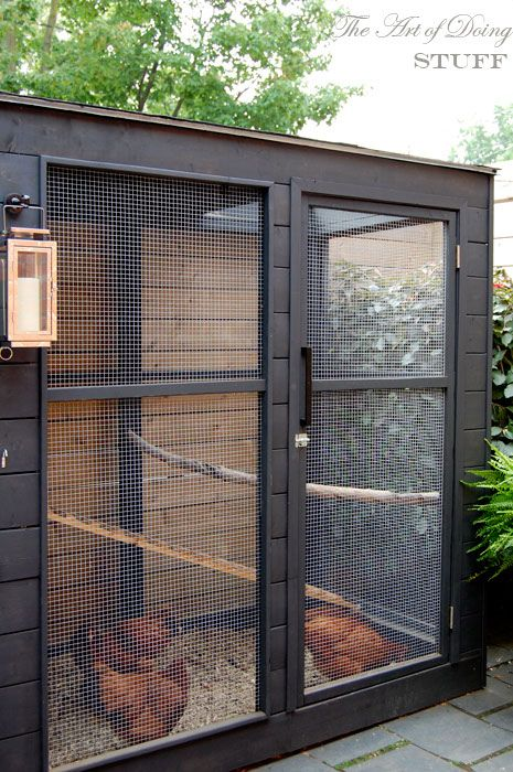 A wonderful blog about how she built her chicken coop - no plans, but a very good & informative read with great pictures!!