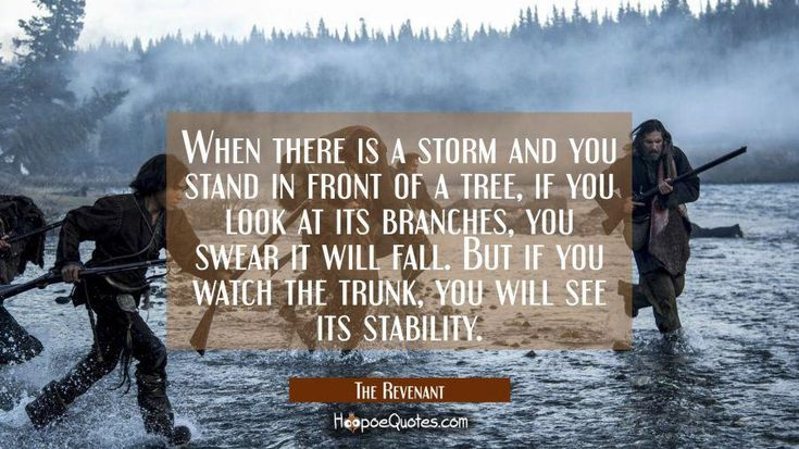 When there is a storm and you stand in front of a tree if you look at its branches you will swear it will fall. But if you watch the trunk you will see its stability.-The Revenant [900x506] #quotes #inspiration