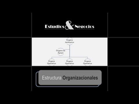 Estructuras Organizacionales - 2: Niveles y Modelos