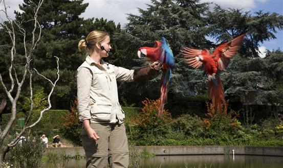 Waarom is een flamingo roze? Hoeveel weegt de kleinste kolibrie? En wat is de grootste vogel ter wereld? Kom het zelf uitvogelen in Vogelpark Avifauna! Meer informatie: http://www.avifauna.nl/