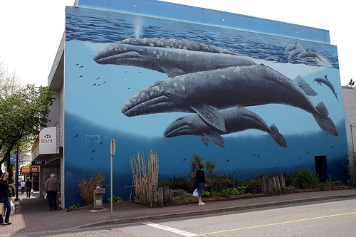 Wyland mural on side of building in White Rock, BC - my new home shortly