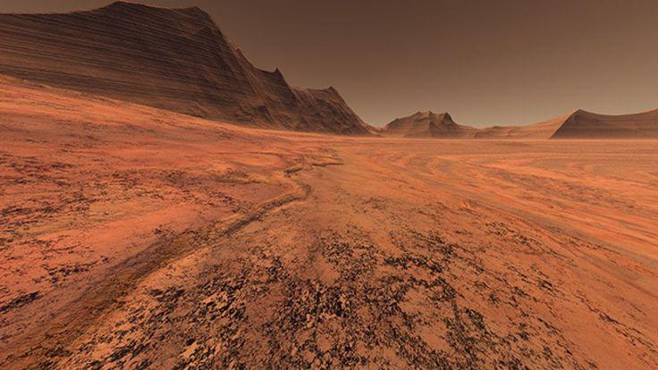 Científicos europeos experimentaron con hongos y líquenes en una superficie parecida a la superficie de Marte, para ver cuales pueden sobrevivir en el planeta.