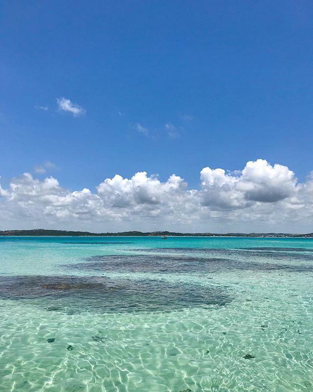 """O passeio às galés de Maragogi é aquele programa imperdível no roteiro de quem visita a cidade alagoana. Quem vai ao lugar não se arrepende, tamanha a beleza, realmente comparável ao mar do Caribe. Por isso Maragogi é chamada de """"Caribe brasileiro"""". As galés são piscinas naturais formadas por recifes de corais no período da maré baixa. Elas têm águas em tom turquesa e cristalinas e abrigam diversos peixes, corais e animais marinhos.É a segunda vez que faço esse passeio e tenho certeza que…"""