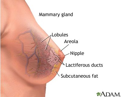 Atypical glandular cell breast cancer words