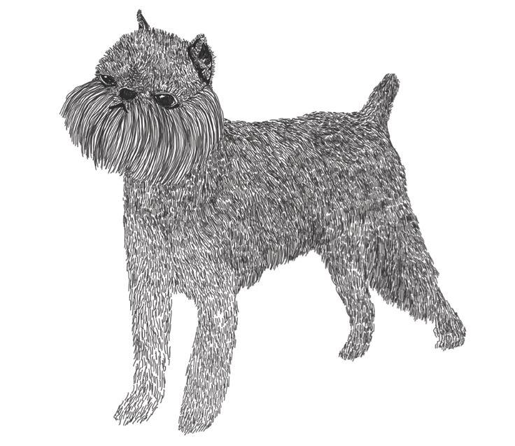 alex citrin illustration