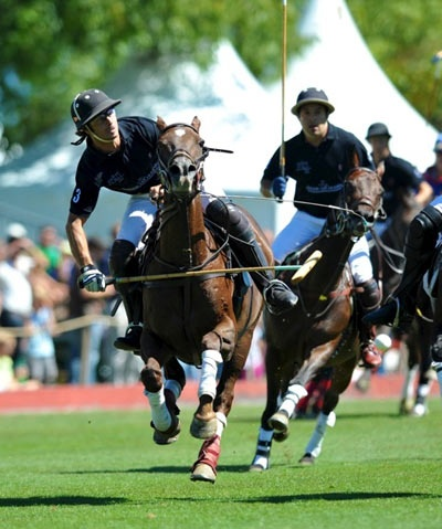 Polo - what a pleasure to watch on a sunny summer afternoon sipping champagne