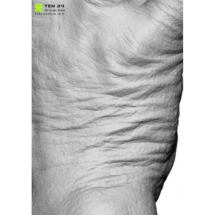 96 best Skin images on Pinterest | Age, Anatomy reference and One ...