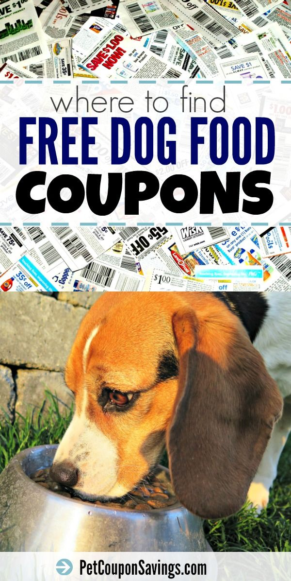 Free Dog Food Coupons Save Money In No Time Pet Coupon Savings Free Dog Food Dog Food Coupons Food Coupon