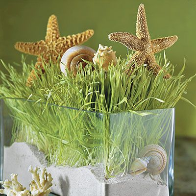 sea-themed centerpiece in a glass vase