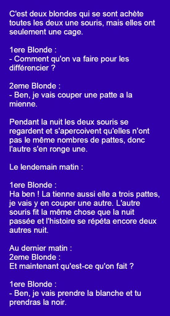Souvent Les 25 meilleures idées de la catégorie Blagues sur les blondes  PY49