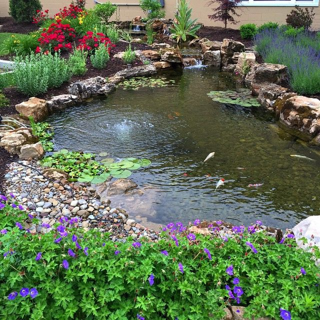 edging ideas for the pond gravel and stone with mulched beds beyond