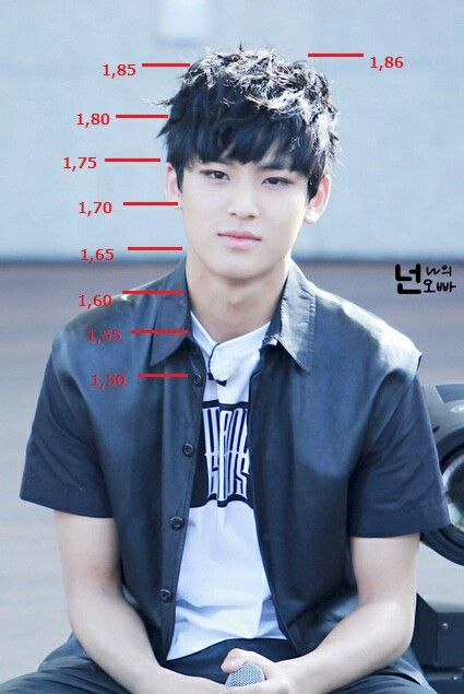 Height chart for #mingyu   My height is where his neck is...