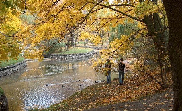 A 1.2-mile hiking trail links most of the Dufferin Islands in Niagara Falls, Canada, via 22 small bridges. (From: Photos: Charming Fall Islands)