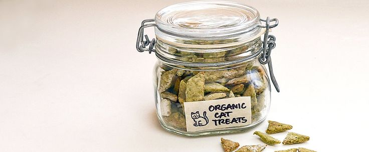 Make these easy and healthy organic cat treats that will have your kitty purring for more!