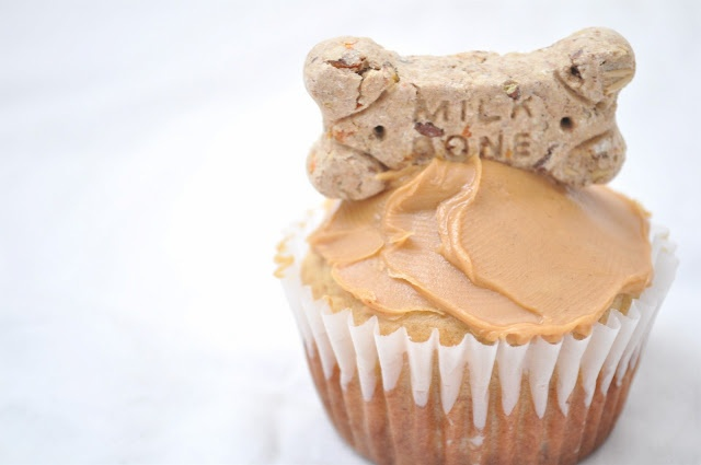 dog cupcake recipe - Scooter might be getting a happy birthday cupcake :)