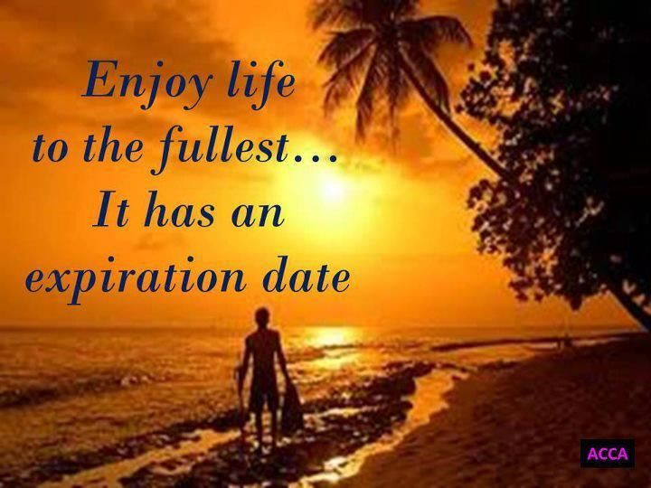 Enjoying Life To The Fullest Quotes. QuotesGram