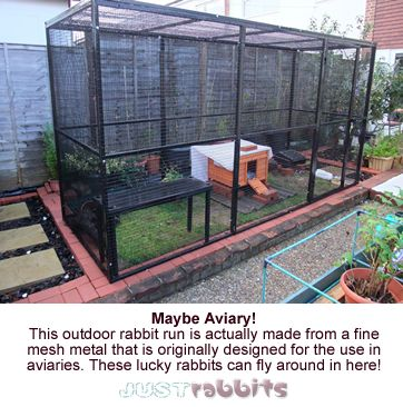 This outdoor rabbit run is made from aviary mesh metal and provides the perfect sanctuary and exercise area for lots of bunnies.