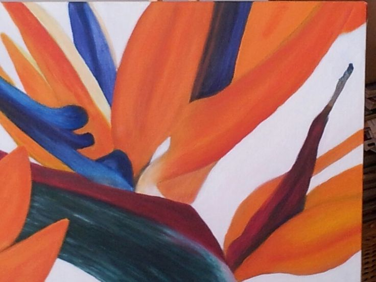 Bird of Paradise by Caro
