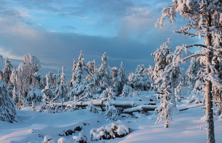 Ounasvaara, Rovaniemi, Finland