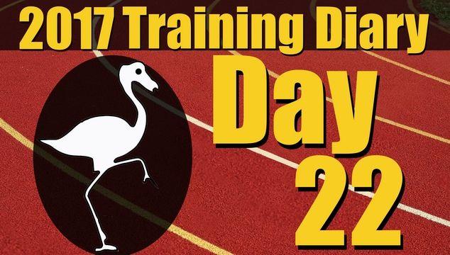 2017 Training Diary: Day 22