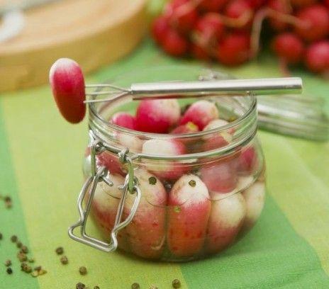 Rzodkiewki marynowane z zielonym pieprzem i kardam - Przepisy.Indonezyjska przekąska o zaskakującym smaku. Można podać je same, zamiast tradycyjnych grzybków czy cebulek, albo dodać do sałatek. Rzodkiewki marynowane z zielonym pieprzem i kardamonem to przepis, którego autorem jest: Magda Gessler