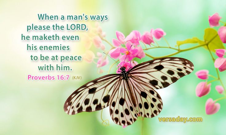 """Proverbs 16:7 - """" When a man's ways please the LORD, he maketh even his enemies to be at peace with him."""""""