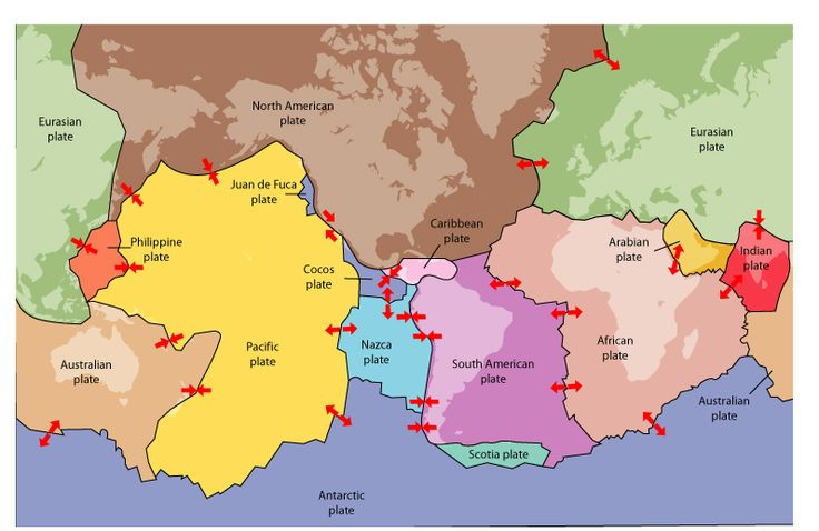 INFO SHEET: Plate tectonics - The plate tectonics theory explains that the earth's outer layer is divided into oceanic and continental plates that slide over the layer below – this movement is responsible for geologic activity such as earthquakes.