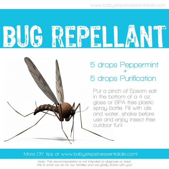Baby Steps to Essential Oils - DIY Insect Repellant. Anybody interested in purchasing the oils or products or learning more about Young Living can email me at siegel_m@bellsouth.net. I would be more than happy to help! Main website www.youngliving.com Or check out the products and order at https://www.youngliving.com/signup/?site=US=1483454=1483454