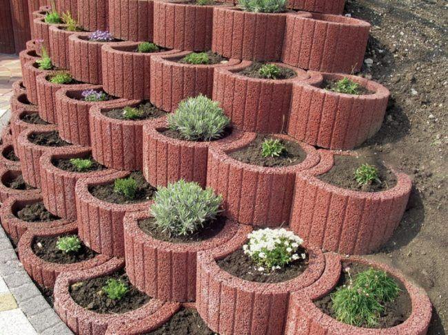 pflanzringe-beton-setzen-gartengestaltung-oval-ziegelrot-kleine-sträucher-pflanzen