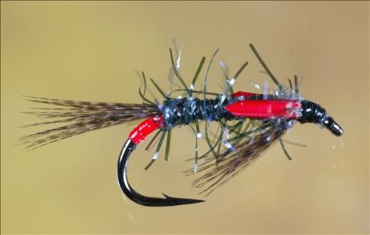 UV Straggle Black and Red Diawl Bach Fly - FlyFishing with Fish4Flies.com