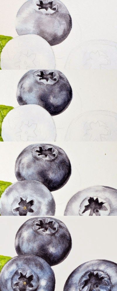 Eunike Nugroho: [Tips] Blueberries: Painting Bloom and Correcting Mistakes in Watercolour. Gives colors used for BLUEBERRIES. Good tutorial.