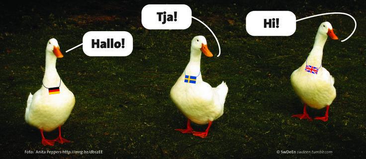 Begrüßung auf schwedisch.