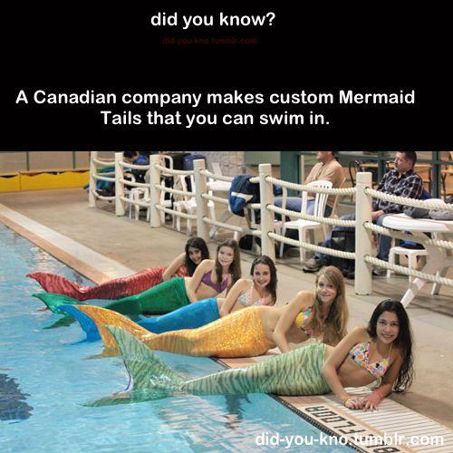 I secretly really want one