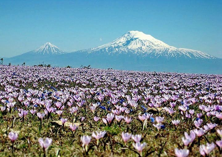 Biblical Mountain ArArAt. ARMENIA