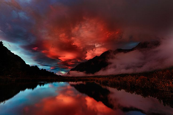 Red in New Zealand.