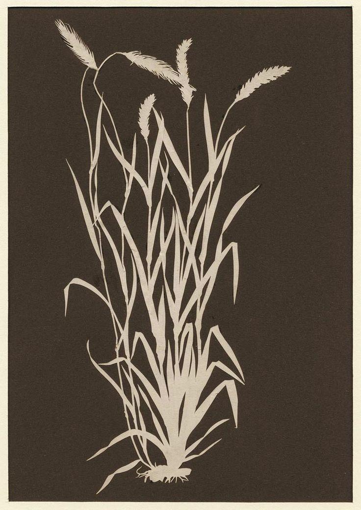 Phillip Otto Runge 1777-1810 - Scherenschnitt - Papercut