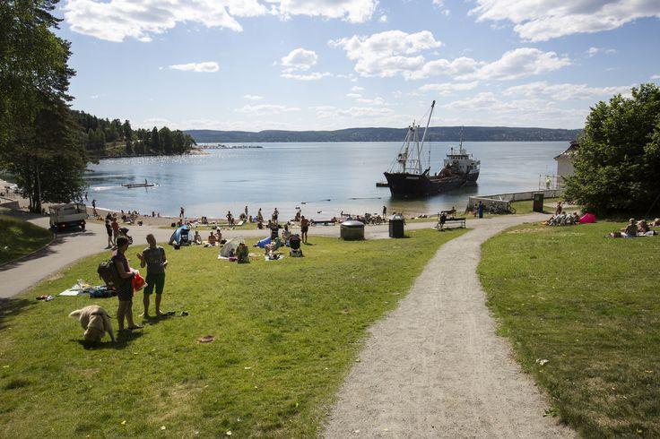 https://flic.kr/p/JymuJk   Påfyll av sand på Oslos strender   Hvervenbukta