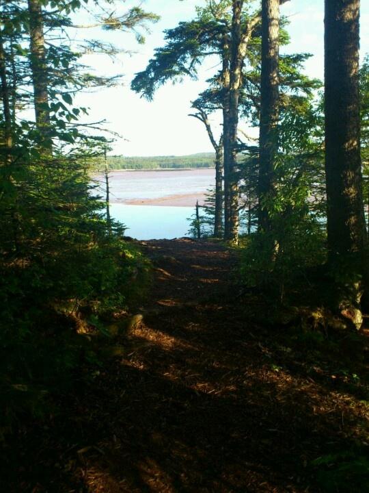 Irving Nature Park, Saint John, NB