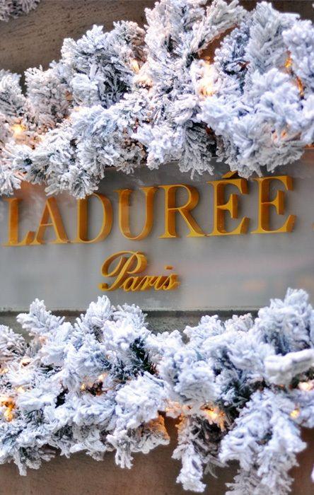 438 best laduree images on pinterest gentleness for Laduree christmas