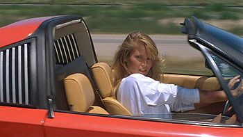 Christy Brinkley, National Lampoons Vacation. So, do you want to go for it?