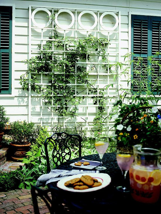 Wall-Mount Trellises - for plant climbers