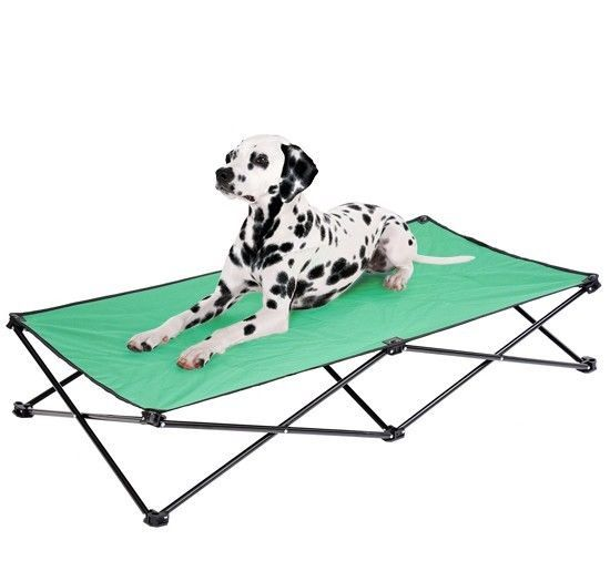 Coleman Folding Dog Bed