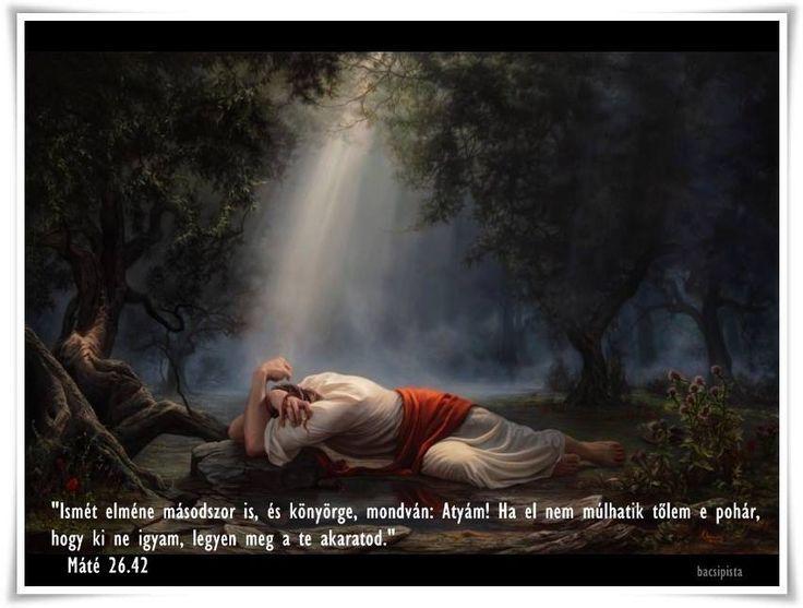 """""""Ismét elméne másodszor is, és könyörge, mondván: Atyám! ha el nem múlhatik tőlem e pohár, hogy ki ne igyam, legyen meg a te akaratod."""" (Máté 26.42)"""